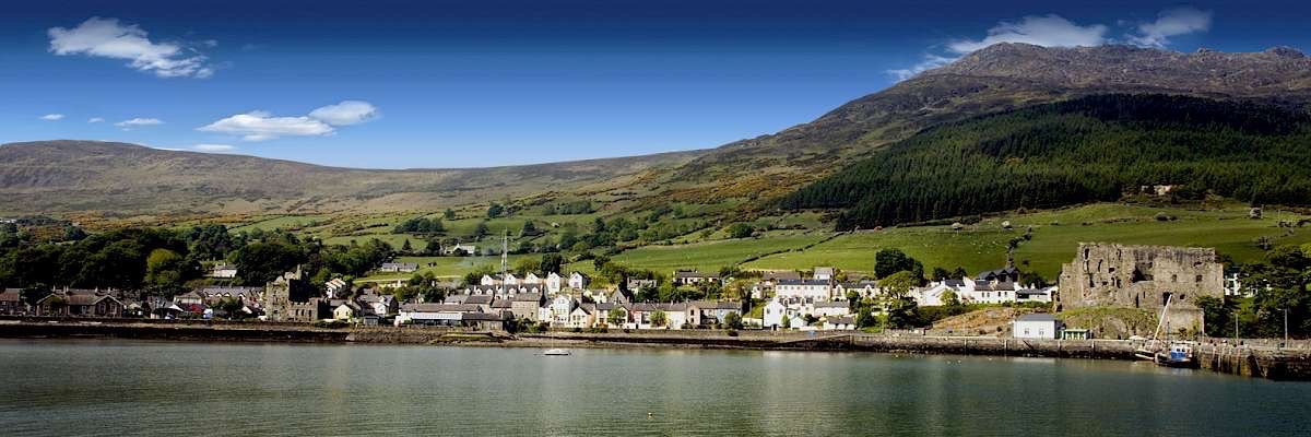 <p>View of Carlingford from the sea</p>